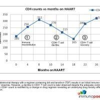 cd4-counts-vs-months-on-haart