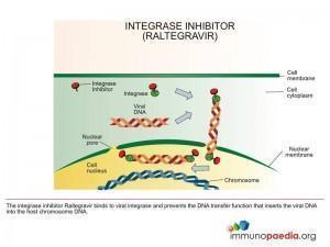 integrase-inhibitor