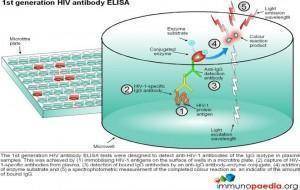 1st-generation-hiv-antibody-elisa-test