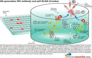 4rd-generation-hiv-antibody-elisa-test