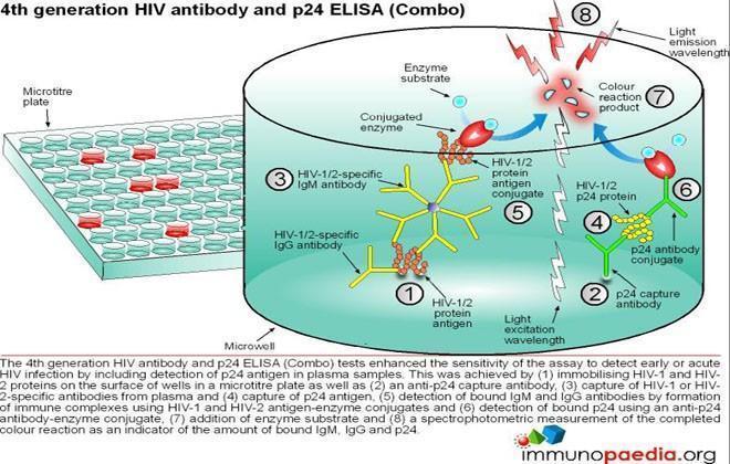 Immunology Diagnostic Tests | Immunopaedia