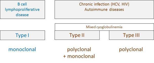 types of cryoglobulins